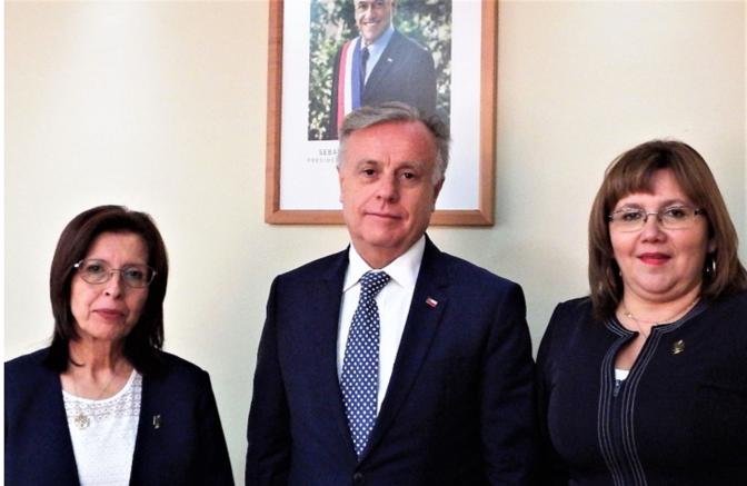 Presidenta del Colegio de Enfermeras se reúne con Ministro Santelices