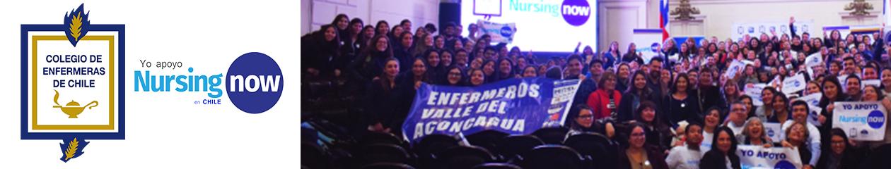 Colegio de enfermeras de Chile A.G.